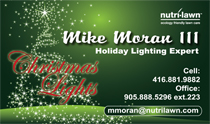 Holiday Lighting Business Cards